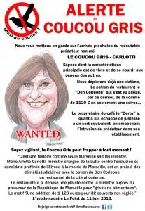 Méfi au Coucou-Gris CARLOTTI